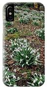 Snowdrops In Spring Woodland IPhone Case