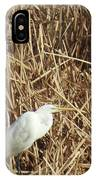 Snowy Egret In Tall Grasses IPhone Case