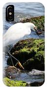 Snowy Egret  Series 2  2 Of 3  Preparing IPhone Case