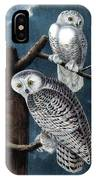 Snowy Owl Audubon Birds Of America 1st Edition 1840 Royal Octavo Plate 28 IPhone Case
