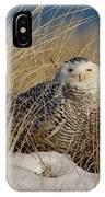 Snowy Owls On The Beach IPhone Case