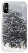 Snowy Pines In The Pike National Forest IPhone Case