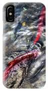 Sockeye Salmon, Alaska, August 2015 IPhone Case