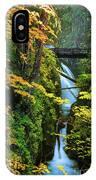 Sol Duc Falls In Autumn IPhone Case