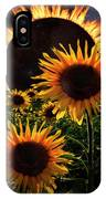 Solar Corona Over The Sunflowers IPhone Case