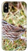 Song Sparrow Sweetie IPhone Case