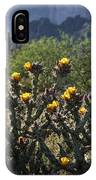 Sonoran Desert Cholla  IPhone Case