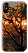 Sonoran Desert Sunrise 2 IPhone Case