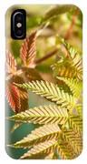Sorbaria Sorbifolia Spring Foliage IPhone Case