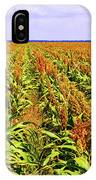 Sorghum Plants Fields In Botswana IPhone Case