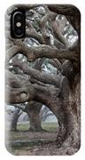 Southern Live Oak IPhone Case