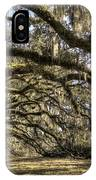 Southern Live Oaks With Spanish Moss Color IPhone Case