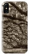 Southern Live Oaks With Spanish Moss IPhone Case