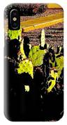 Southwest, Saturated IPhone Case