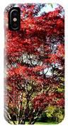 Sparkling Japaneese Maple Tree IPhone Case