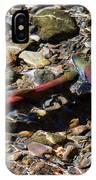 Spawning Salmon - Odell Lake Oregon IPhone Case