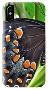 Spicebush Swallowtail  IPhone Case