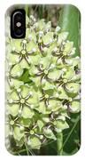 Spider Milkweed - Antelope Horns IPhone Case