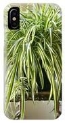 Spider Plant IPhone Case