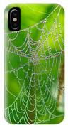 Spider Web Artwork IPhone Case