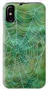 Spider Web In The Springtime IPhone Case