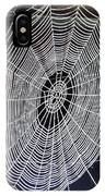 Spider's Web IPhone Case