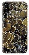 Spirals In Corals IPhone Case