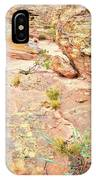 Splash Of Color In Valley Of Fire's Wash 3 IPhone Case