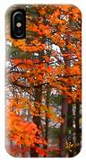 Splashes Of Autumn IPhone Case