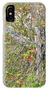 Split Rail Fence And Poison Ivy IPhone Case