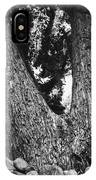 Splitting Tree IPhone Case