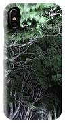 Spooky Trees IPhone Case