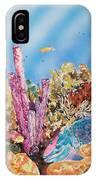 Spotlight Parrotfish IPhone Case