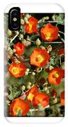 Spring - Desert Style 2 IPhone Case