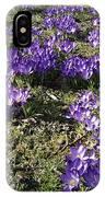 Spring 2 IPhone Case