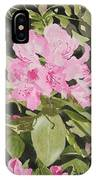 Spring At The Cabin IPhone Case