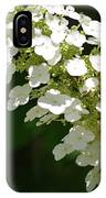 Spring Bloomers 2 IPhone Case