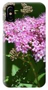 Spring Bloomers  IPhone Case