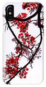 Spring Blossom In Maldives. Flamboyant Tree IPhone Case