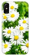 Spring Daisy In The Meadow IPhone Case