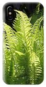 Spring Fern Fronds IPhone Case