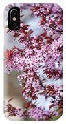 Spring In Town IPhone Case