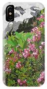 Spring On Mount Rainier IPhone Case