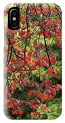 Spring Rain In Descanso Gardens IPhone Case