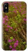 Spring Rhodora Blossoms IPhone Case