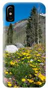 Spring Rocky Mountain Landscape IPhone Case