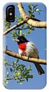 Spring Rose Breasted Grosbeak IPhone Case
