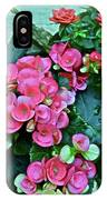 Spring Show 17 Begonias And Roses IPhone Case