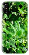 Spring Time Vineyards IPhone Case