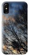 Springfield Evening 2013-02-14 IPhone Case